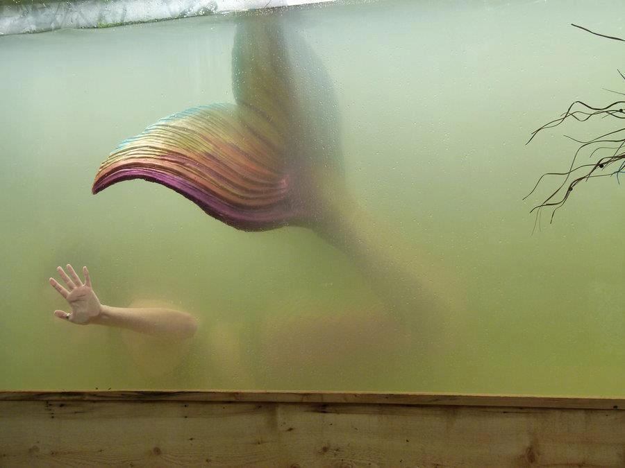 street art (artist is unknown)