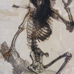 Jaya Suberg: della Luna mutante.